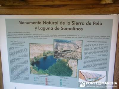 Sierra de la Pela -Barranco de Borbocid; rutas de senderismo por madrid